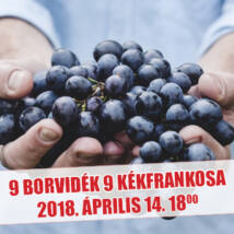 9 borvidék 9 kékfrankosa borkóstoló jegy